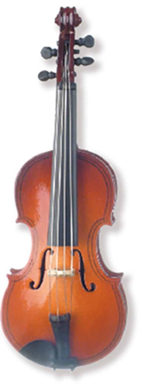 Geige magnetisch